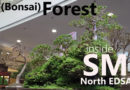 A Bonsai Forest Sprouted inside SM North EDSA